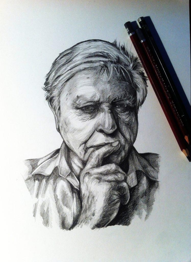 Portrait of Sir David Attenborough - Graphite pencil on paper