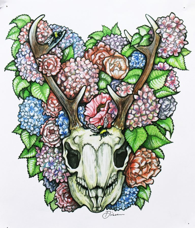 A commission based on a Jackalope skull - Watercolour pencils and mixed media on paper