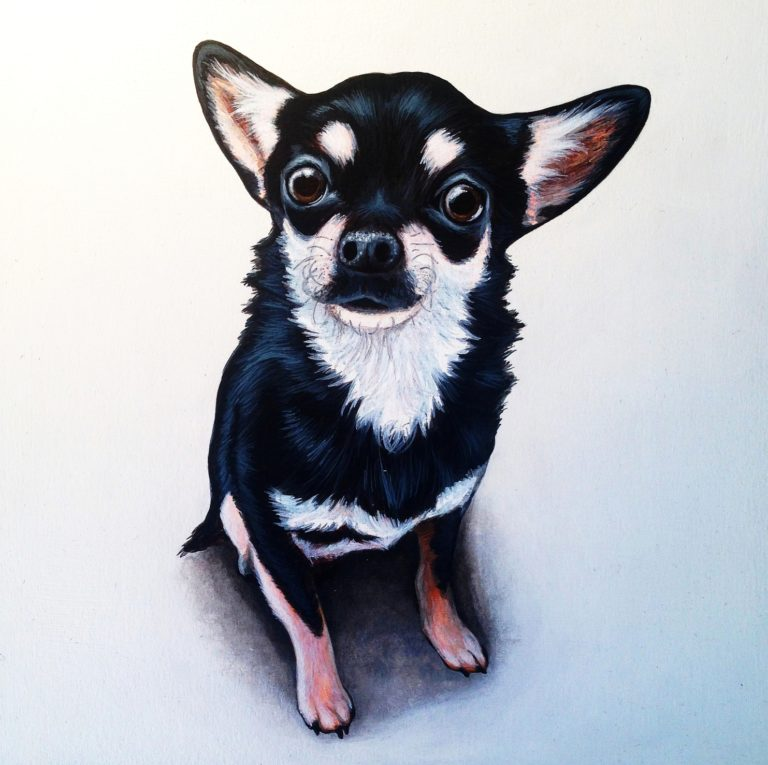 Commissioned pet portrait - Acrylic paint on wood board